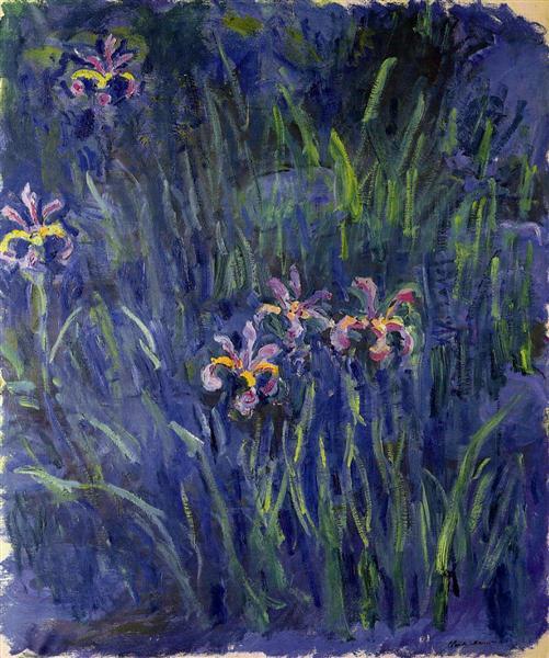 klod-mone-irisy